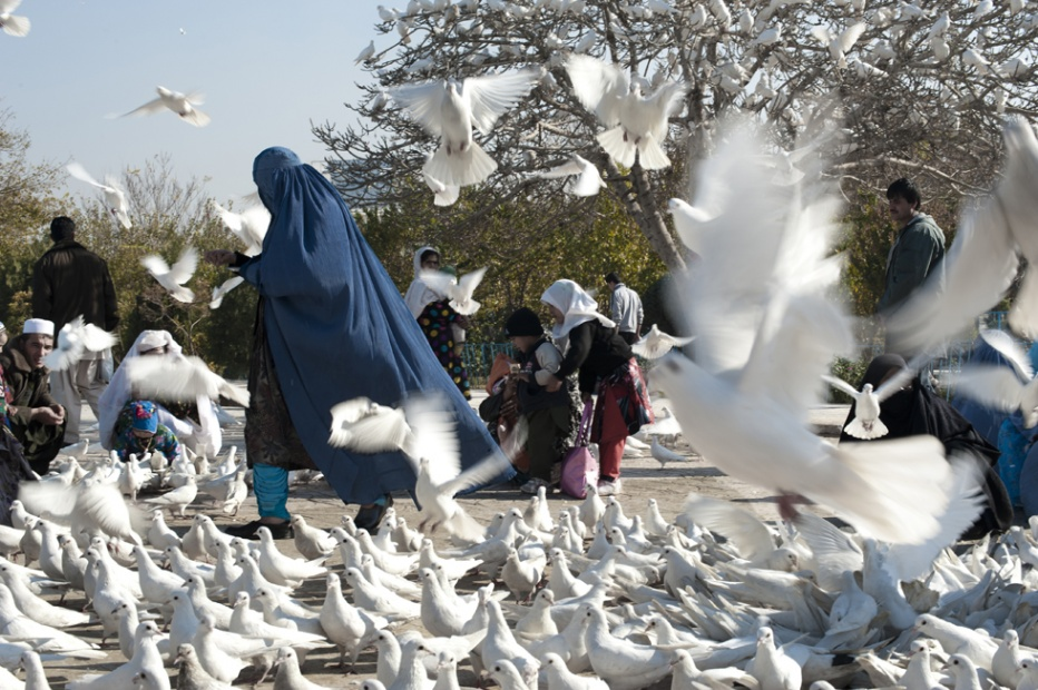 An afghan feeds doves in front of the Blue Mosque, Mazar-i-Sharif 2012